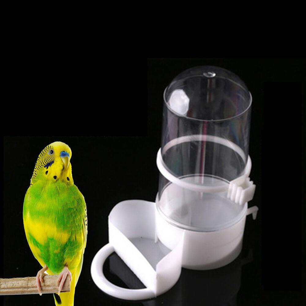 Возврат поилки для птиц
